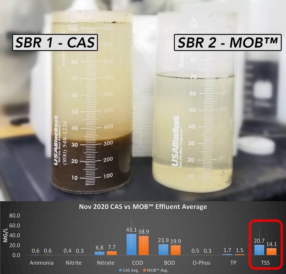 November CAS vs MOB Effluent Average