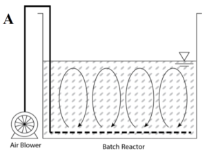 Batch reactor with single-stage aeration using MOB™ process for the wastewater sample.